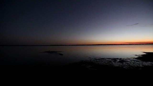 amazon-Dawn